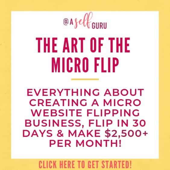 The Art of the Micro Flip Jenn Leach course website flipping