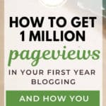 How to Get 1 Million Pageviews in Your First Year Blogging: Interview with Frances Vidakovic