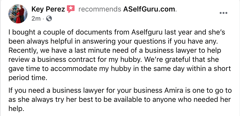 aselfguru business contracts legal templates review