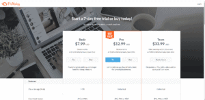 screenshot of picmonkey pricing